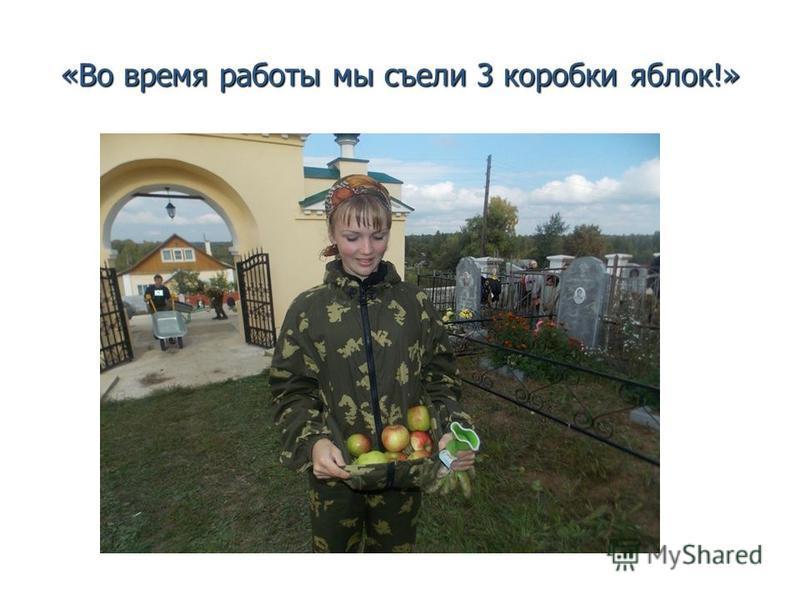«Во время работы мы съели 3 коробки яблок!»