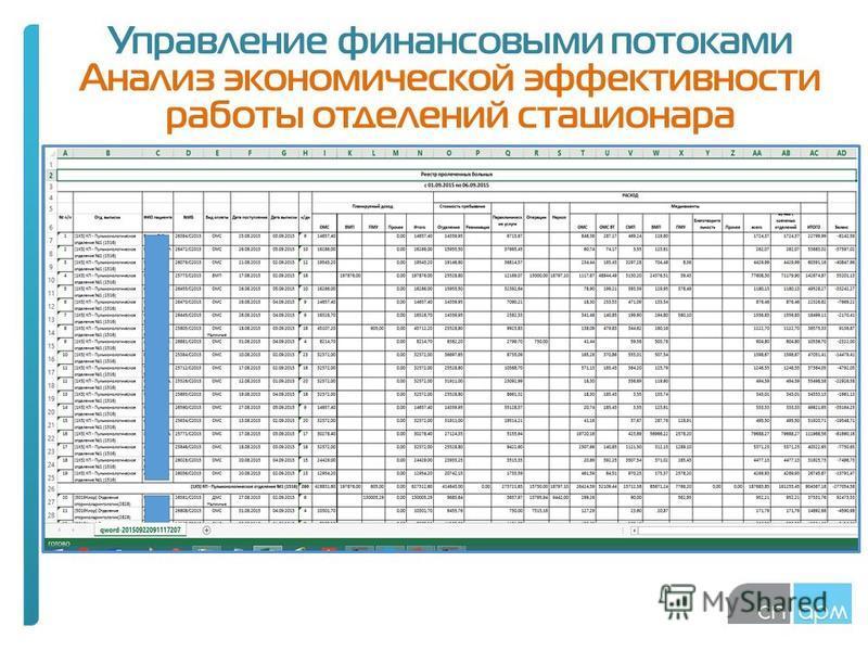 Управление финансовыми потоками Анализ экономической эффективности работы отделений стационара