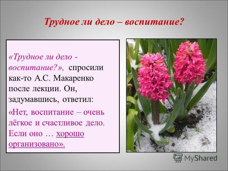«Трудное ли дело - воспитание?», спросили как-то А.С. Макаренко после лекции. Он, задумавшись, ответил: «Нет, воспитание – очень лёгкое и счастливое дело. Если оно … хорошо организовано». Трудное ли дело – воспитание?