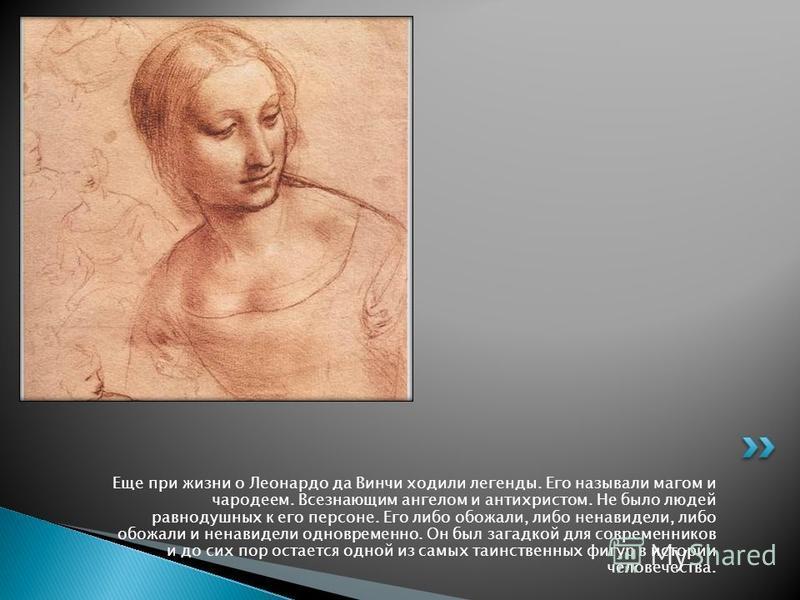 Еще при жизни о Леонардо да Винчи ходили легенды. Его называли магом и чародеем. Всезнающим ангелом и антихристом. Не было людей равнодушных к его персоне. Его либо обожали, либо ненавидели, либо обожали и ненавидели одновременно. Он был загадкой для