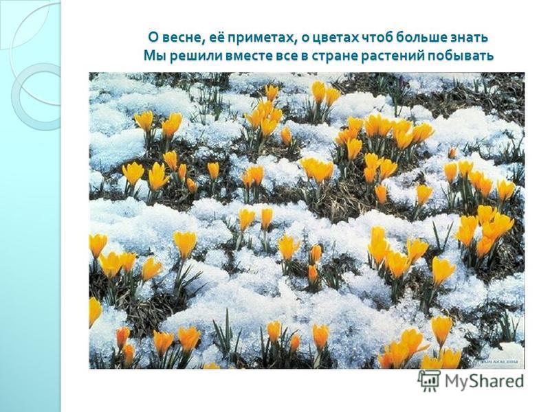 О весне, её приметах, о цветах чтоб больше знать Мы решили вместе все в стране растений побывать