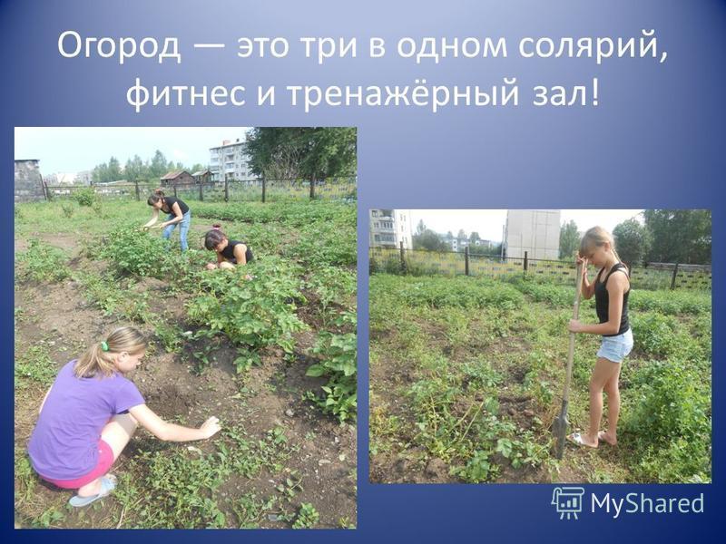 Огород это три в одном солярий, фитнес и тренажёрный зал!