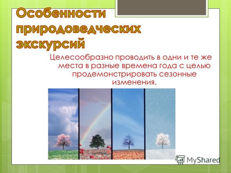Целесообразно проводить в одни и те же места в разные времена года с целью продемонстрировать сезонные изменения.