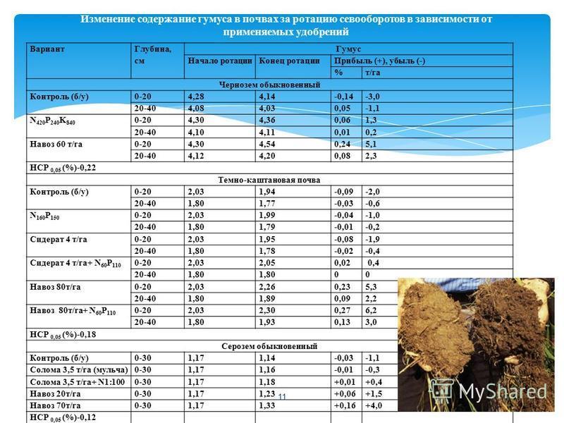 Изменение содержание гумуса в почвах за ротацию севооборотов в зависимости от применяемых удобрений Вариант Глубина, см Гумус Начало ротации Конец ротации Прибыль (+), убыль (-) %т/га Чернозем обыкновенный Контроль (б/у)0-204,284,14-0,14-3,0 20-404,0