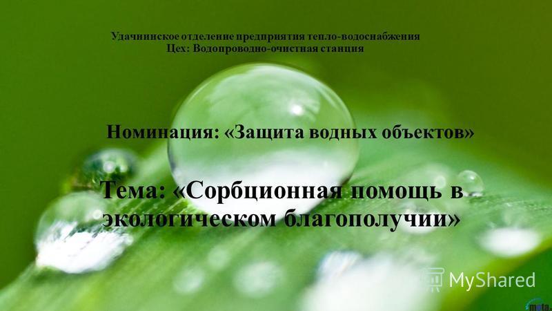 Номинация: «Защита водных объектов» Тема: «Сорбционная помощь в экологическом благополучии» Удачнинское отделение предприятия тепло-водоснабжения Цех: Водопроводно-очистная станция