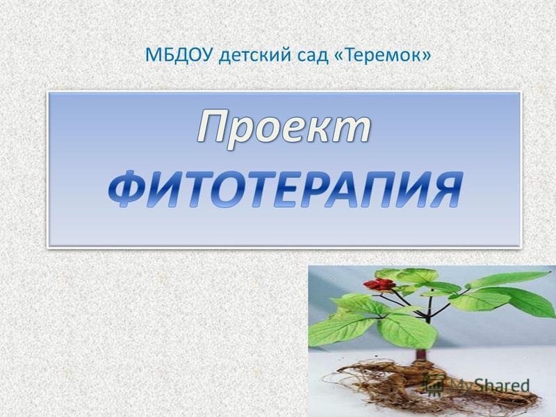 МБДОУ детский сад «Теремок»