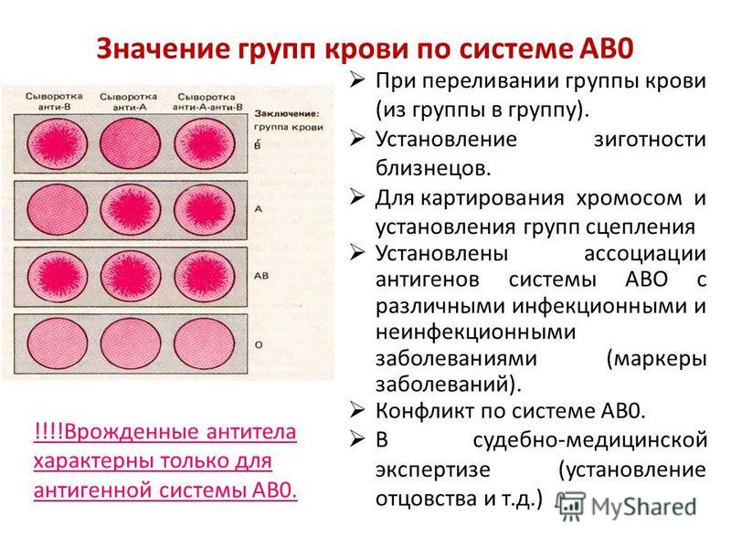 Значение групп крови по системе АВ0 При переливании группы крови (из группы в группу). Установление зиготности близнецов. Для картирования хромосом и установления групп сцепления Установлены ассоциации антигенов системы АВО с различными инфекционными