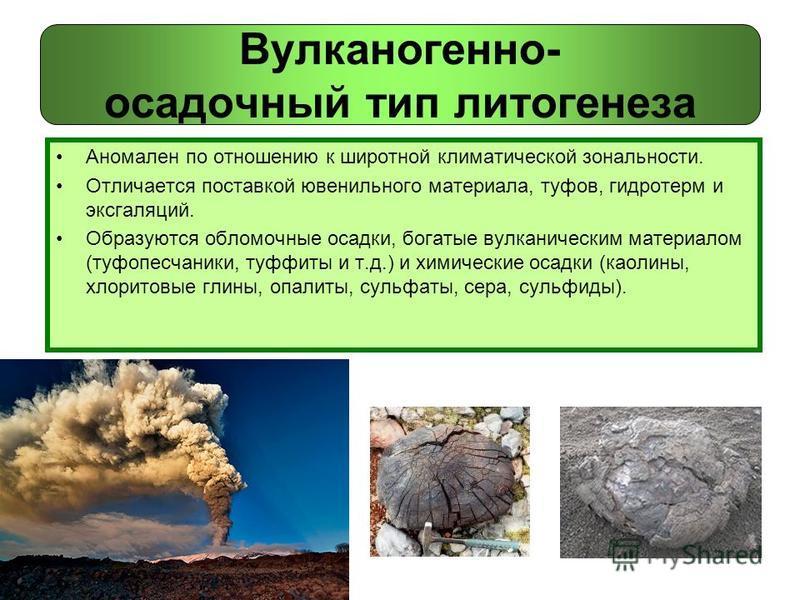 Вулканогенно- осадочный тип литогенеза Аномален по отношению к широтной климатической зональности. Отличается поставкой ювенильного материала, туфов, гидротерм и эксгаляций. Образуются обломочные осадки, богатые вулканическим материалом (туфопесчаник