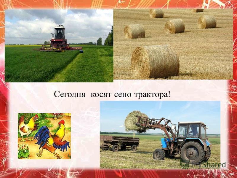 Сегодня косят сено трактора !
