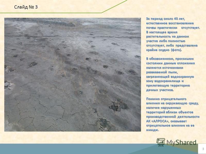 3 Место сбора отработанного масла За период около 40 лет, естественное восстановление почвы практически отсутствует. В настоящее время растительность на данном участке либо полностью отсутствует, либо представлена крайне скудно (фото). В обезвоженном