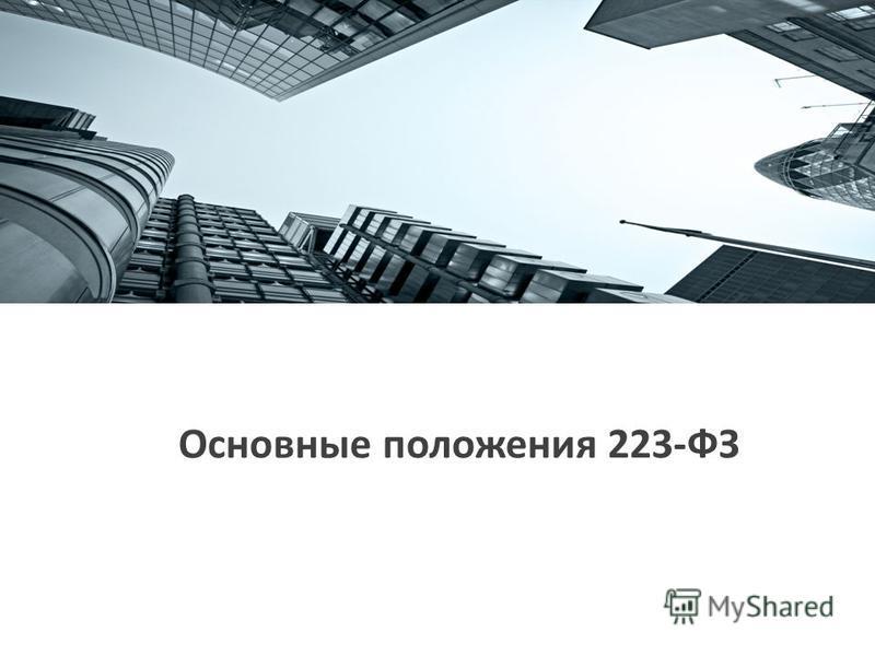 Основные положения 223-ФЗ