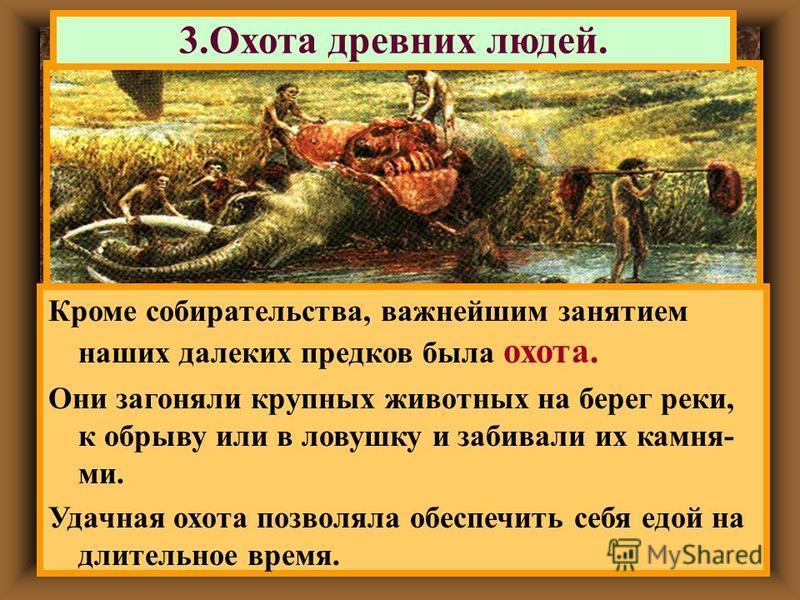 3. Охота древних людей. Кроме собирательства, важнейшим занятием наших далеких предков была охота. Они загоняли крупных животных на берег реки, к обрыву или в ловушку и забивали их камня- ми. Удачная охота позволяла обеспечить себя едой на длительное