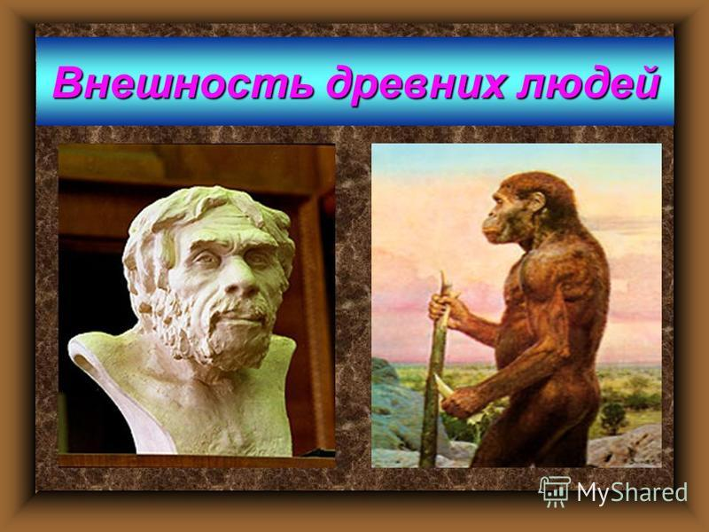 Внешность древних людей