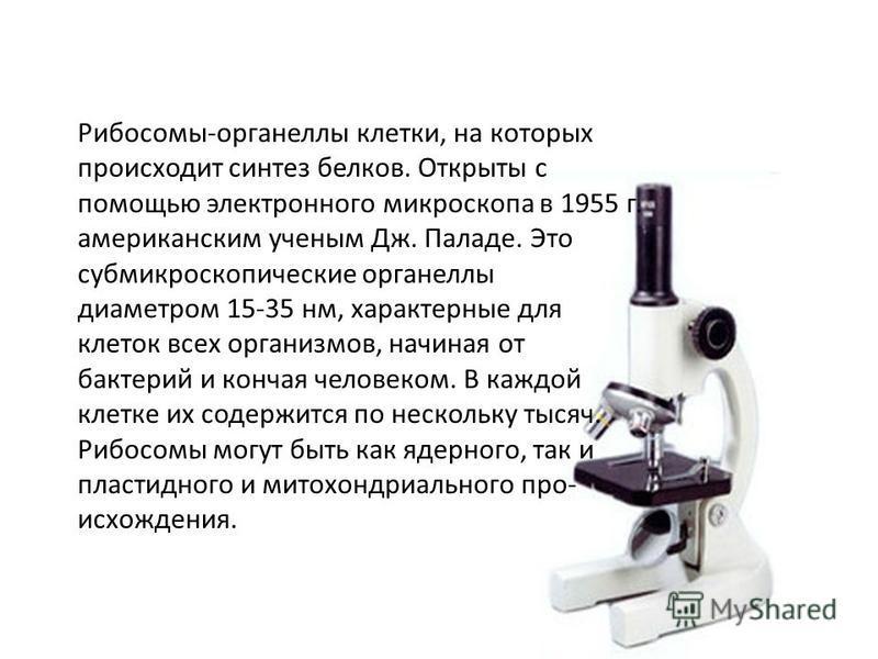 Рибосомы-органеллы клетки, на которых происходит синтез белков. Открыты с помощью электронного микроскопа в 1955 г. американским ученым Дж. Паладе. Это субмикроскопические органеллы диаметром 15-35 нм, характерные для клеток всех организмов, начиная