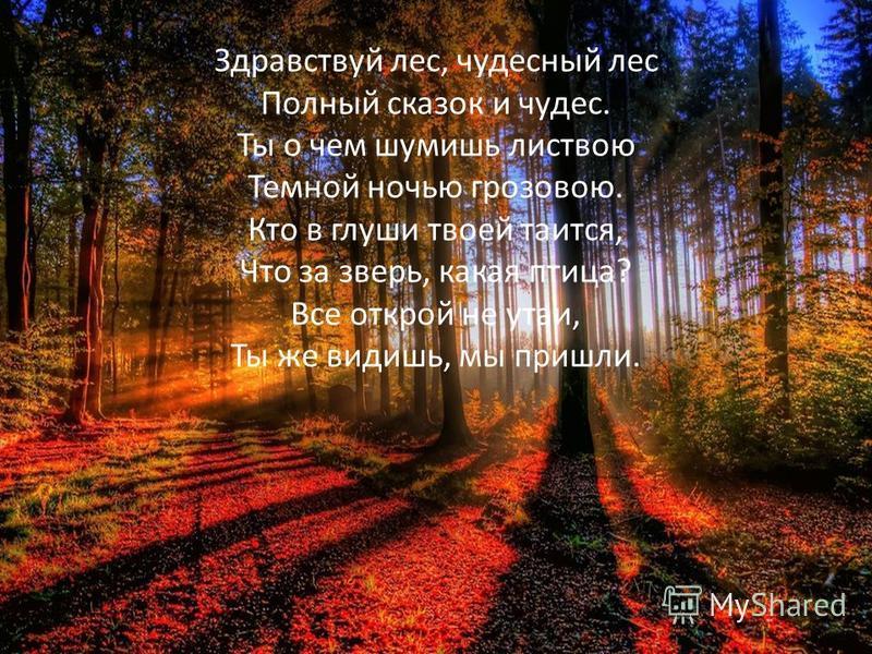 Здравствуй лес, чудесный лес Полный сказок и чудес. Ты о чем шумишь листвою Темной ночью грозовою. Кто в глуши твоей таится, Что за зверь, какая птица? Все открой не утаи, Ты же видишь, мы пришли.