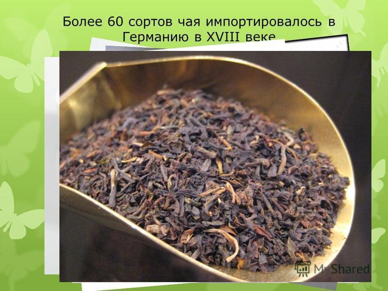 Более 60 сортов чая импортировалось в Германию в XVIII веке