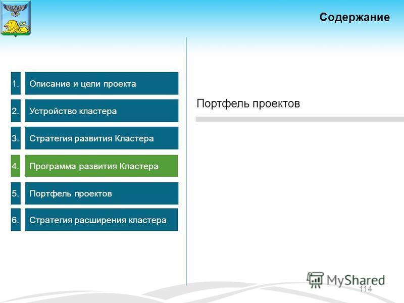 Содержание 1. Описание и цели проекта 2. Устройство кластера 3. Стратегия развития Кластера 4. Программа развития Кластера 5.5. Портфель проектов 6.6. Стратегия расширения кластера 114