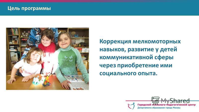 Коррекция мелко моторных навыков, развитие у детей коммуникативной сферы через приобретение ими социального опыта. Цель программы