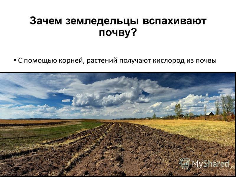 Зачем земледельцы вспахивают почву? С помощью корней, растений получают кислород из почвы