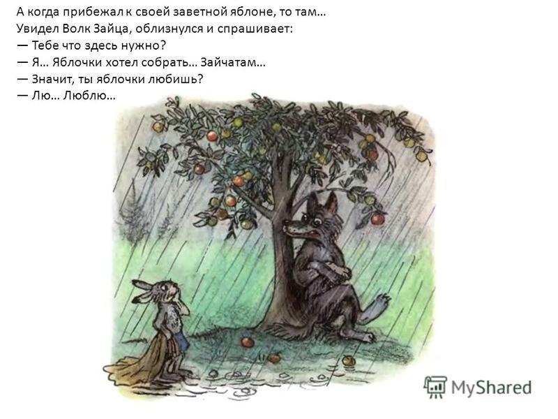 А когда прибежал к своей заветной яблоне, то там… Увидел Волк Зайца, облизнулся и спрашивает: Тебе что здесь нужно? Я… Яблочки хотел собрать… Зайчатам… Значит, ты яблочки любишь? Лю… Люблю…