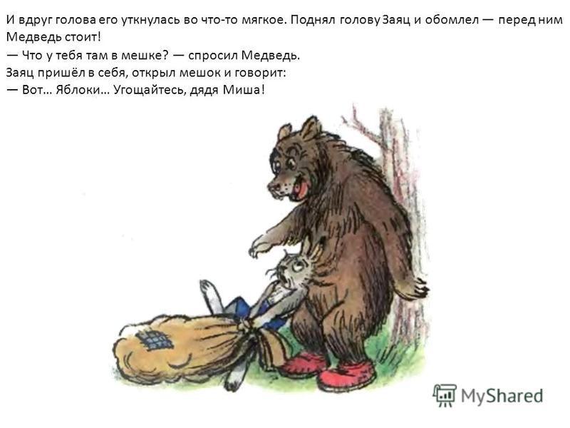 И вдруг голова его уткнулась во что-то мягкое. Поднял голову Заяц и обомлел перед ним Медведь стоит! Что у тебя там в мешке? спросил Медведь. Заяц пришёл в себя, открыл мешок и говорит: Вот… Яблоки… Угощайтесь, дядя Миша!