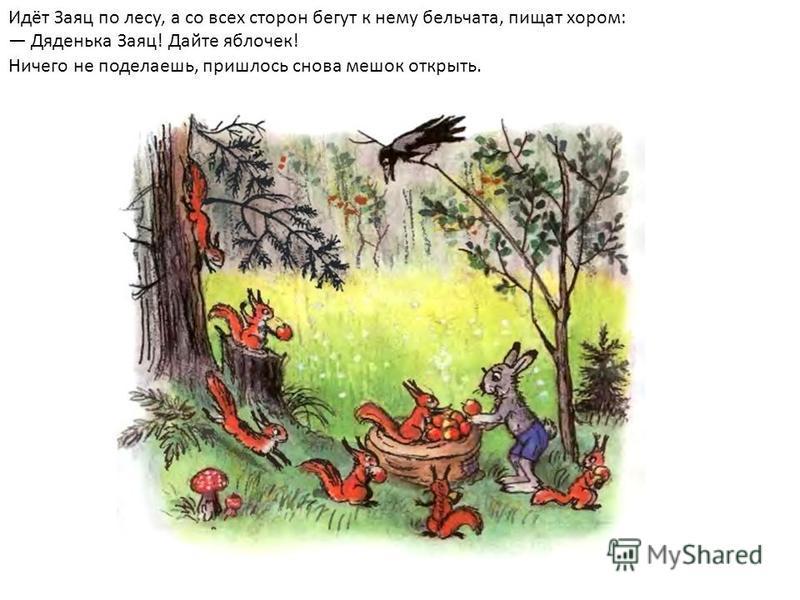 Идёт Заяц по лесу, а со всех сторон бегут к нему бельчата, пищат хором: Дяденька Заяц! Дайте яблочек! Ничего не поделаешь, пришлось снова мешок открыть.
