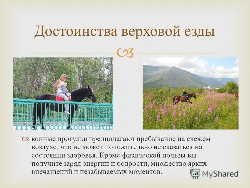 конные прогулки предполагают пребывание на свежем воздухе, что не может положительно не сказаться на состоянии здоровья. Кроме физической пользы вы получите заряд энергии и бодрости, множество ярких впечатлений и незабываемых моментов. Достоинства ве
