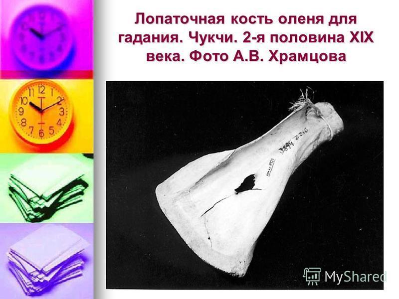 Лопаточная кость оленя для гадания. Чукчи. 2-я половина XIX века. Фото А.В. Храмцова