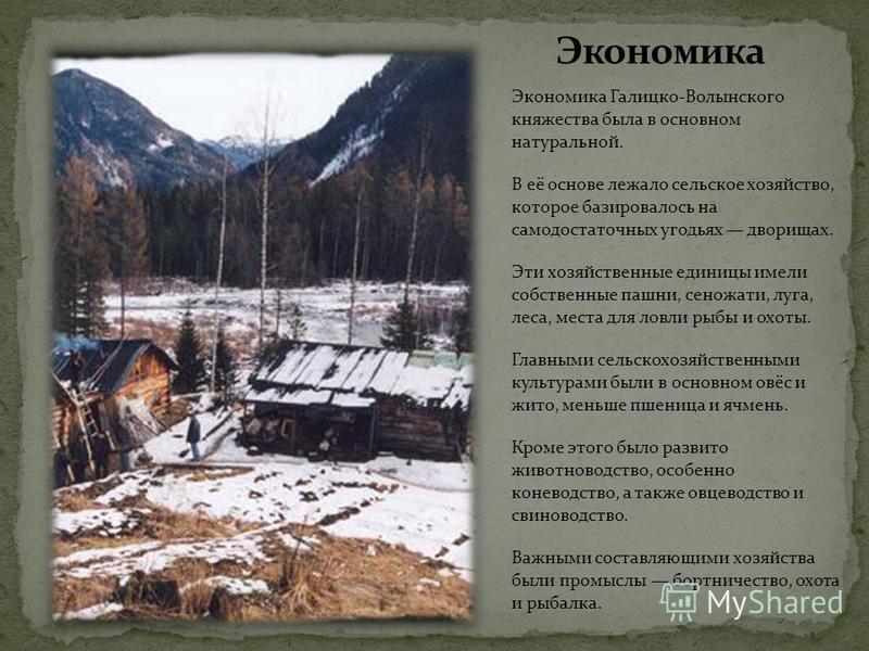Экономика Галицко-Волынского княжества была в основном натуральной. В её основе лежало сельское хозяйство, которое базировалось на самодостаточных угодьях дворищах. Эти хозяйственные единицы имели собственные пашни, сеножати, луга, леса, места для ло