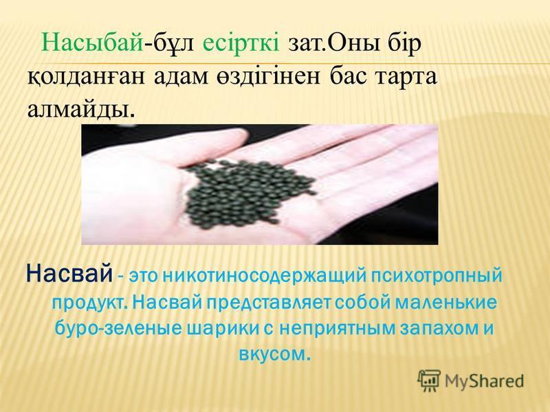 Насвай - это никотиносодержащий психотропный продукт. Насвай представляет собой маленькие буро-зеленые шарики с неприятным запахом и вкусом. Насыбай-бұл есірткі зат.Оны бір қолданған адам өздігінен бас торта алмайды.