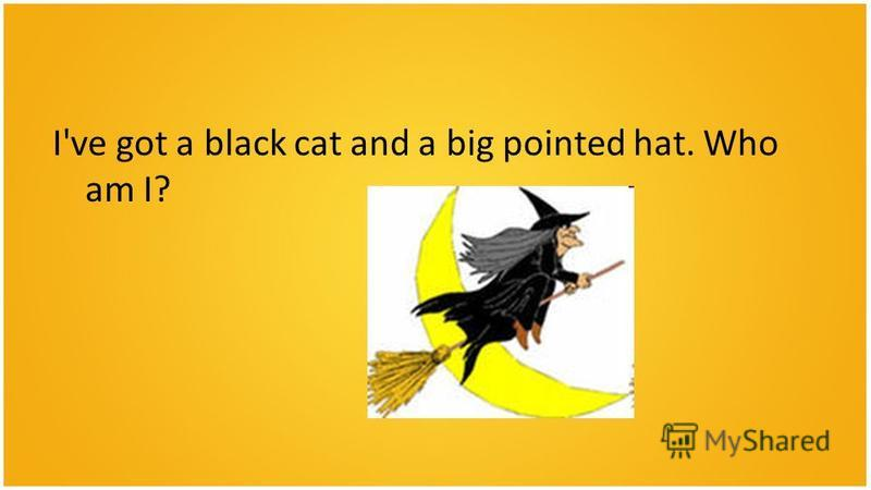 I've got a black cat and a big pointed hat. Who am I?