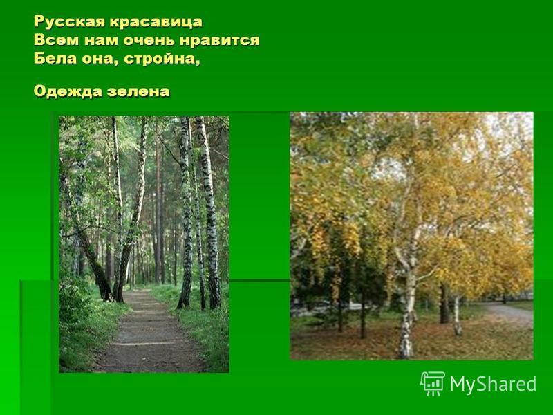 Русская красавица Всем нам очень нравится Бела она, стройна, Одежда зелена