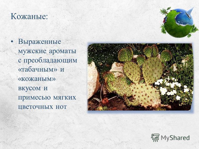 Кожаные: Выраженные мужские ароматы с преобладающим «табачным» и «кожаным» вкусом и примесью мягких цветочных нот
