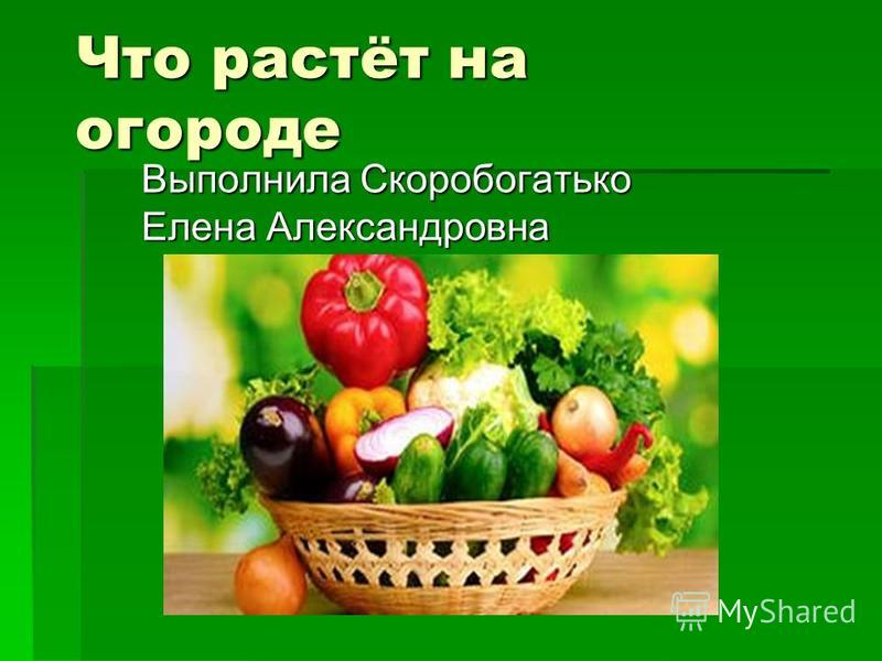 Что растёт на огороде Выполнила Скоробогатько Елена Александровна