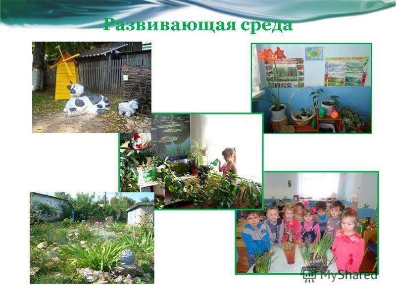 Развивающая среда