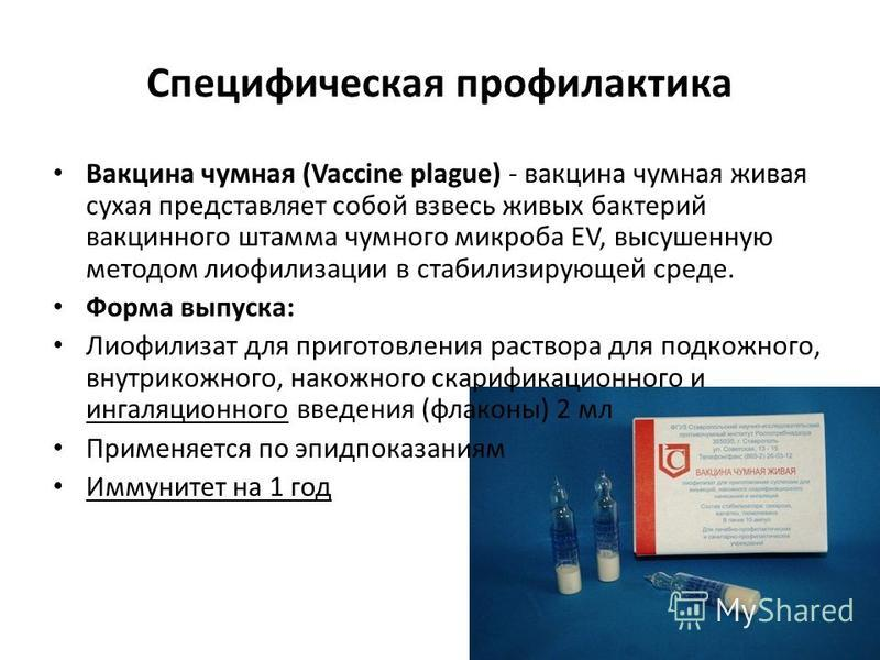 Специфическая профилактика Вакцина чумная (Vaccine plague) - вакцина чумная живая сухая представляет собой взвесь живых бактерий вакцинного штамма чумного микроба ЕV, высушенную методом лиофилизации в стабилизирующей среде. Форма выпуска: Лиофилизат