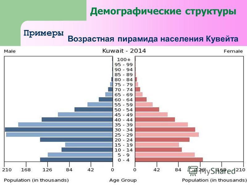 Демографические структуры Примеры Возрастная пирамида населения Кувейта