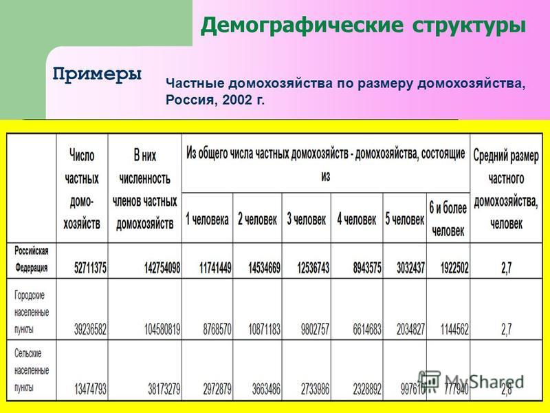 Демографические структуры Примеры Частные домохозяйства по размеру домохозяйства, Россия, 2002 г.