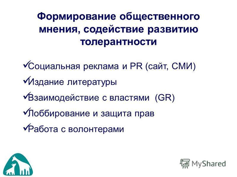 Формирование общественного мнения, содействие развитию толерантности Социальная реклама и PR (сайт, СМИ) Издание литературы Взаимодействие с властями (GR) Лоббирование и защита прав Работа с волонтерами