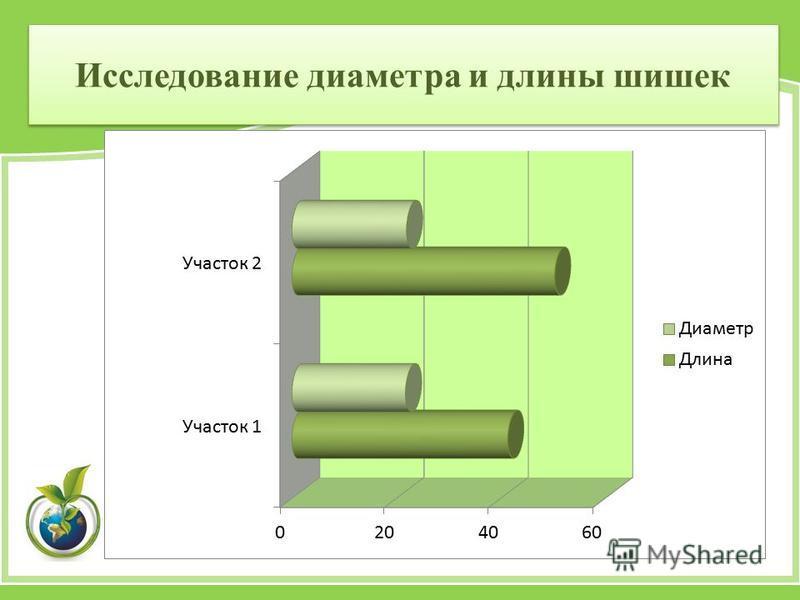 Исследование диаметра и длины шишек