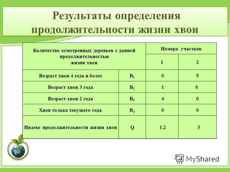 Результаты определения продолжительности жизни хвои
