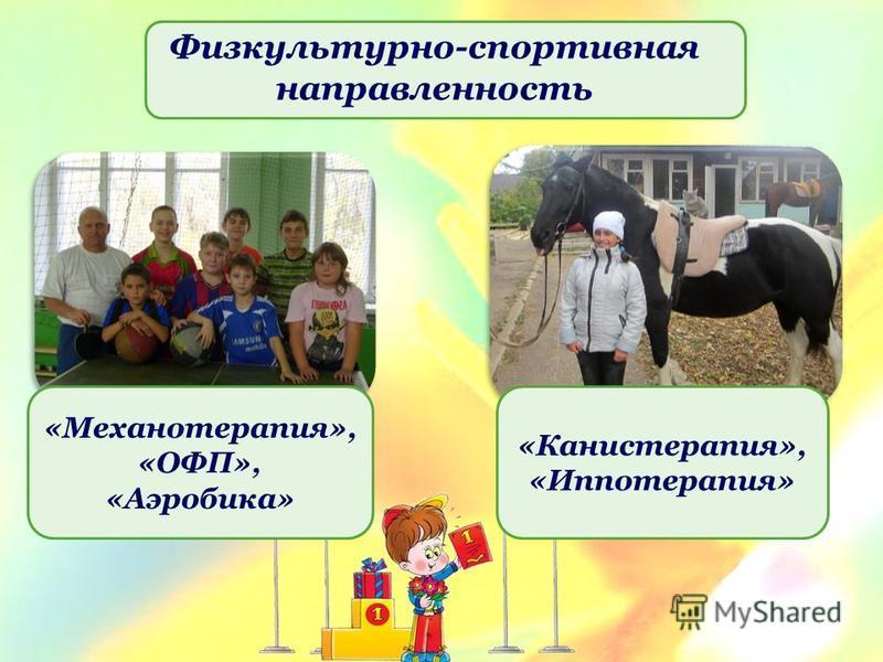 Физкультурно-спортивная направленность «Механотерапия», «ОФП», «Аэробика» «Канистерапия», «Иппотерапия»