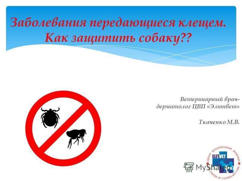 Заболевания передающиеся клещом. Как защитить собаку?? Ветеринарный врач- дерматолог ЦВП «Элитвет» Ткаченко М.В.