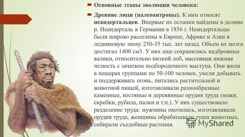 Основные этапы эволюции человека: Древние люди (палеоантропы). К ним относят неандертальцев. Впервые их останки найдены в долине р. Неандерталь в Германии в 1856 г. Неандертальцы были широко расселены в Европе, Африке и Азии в ледниковую эпоху 250-35