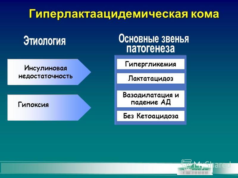 Гиперлактаацидемическая кома Гипоксия Гипергликемия Лактатацидоз Без Кетоацидоза Инсулиновая недостаточность Вазодилатация и падение АД
