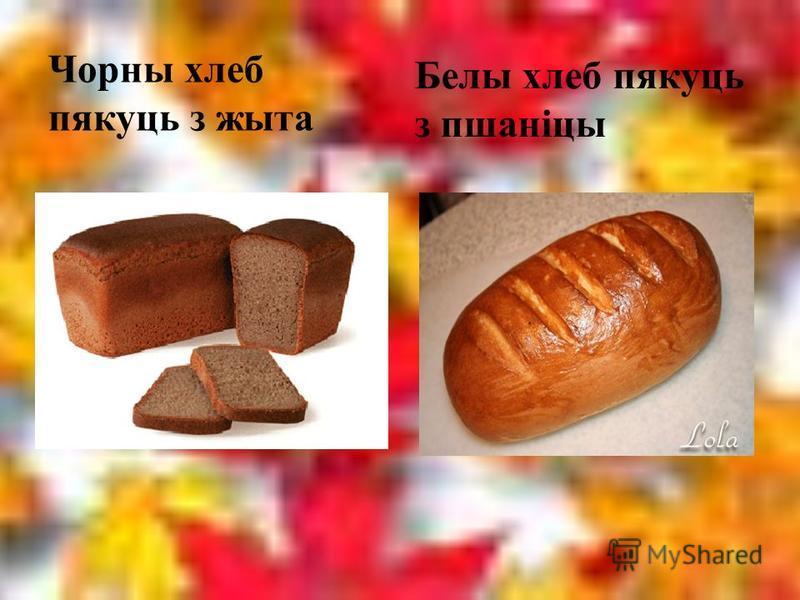Каласковыя расліны Авёс Ячмень
