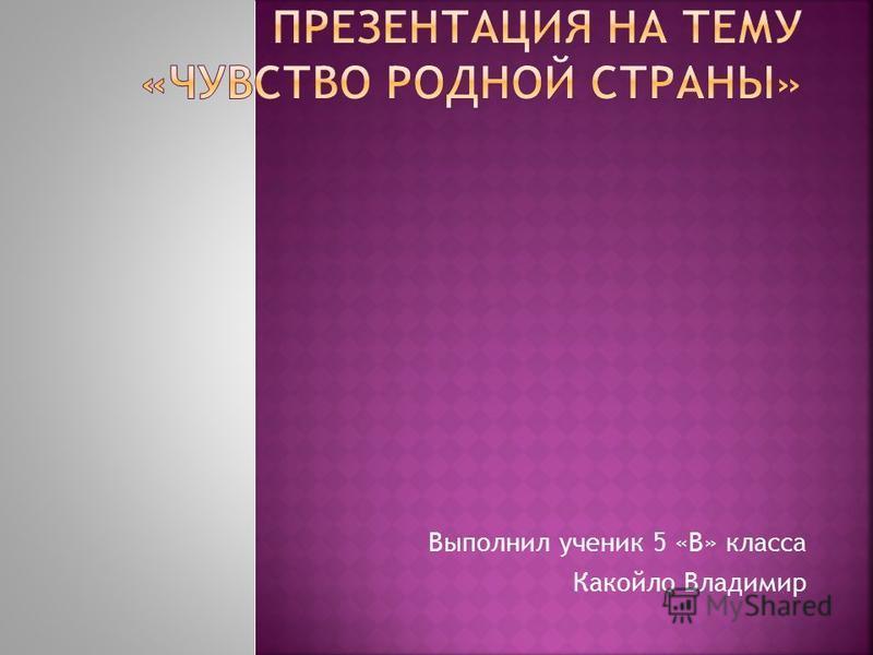 Выполнил ученик 5 «В» класса Какойло Владимир