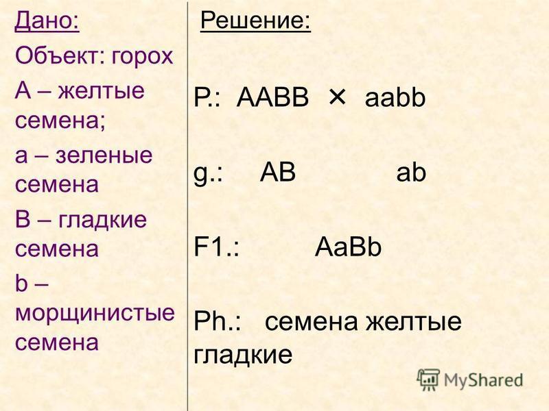 Дано: Объект: горох А – желтые семена; а – зеленые семена В – гладкие семена b – морщинистые семена Решение: Р.: ААВВ ааbb g.: AB ab F1.: AaBb Ph.: семена желтые гладкие