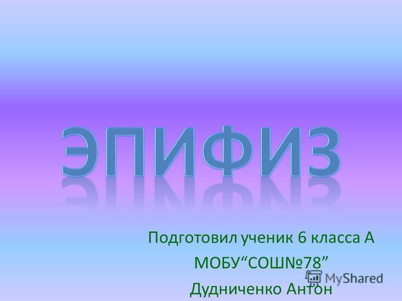 Подготовил ученик 6 класса А МОБУСОШ78 Дудниченко Антон