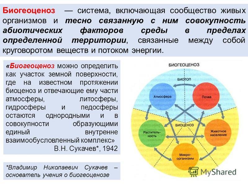 Биогеоценоз система, включающая сообщество живых организмов и тесно связанную с ним совокупность абиотических факторов среды в пределах определенной территории, связанные между сопой круговоротом веществ и потоком энергии. «Биогеоценоз можно определи